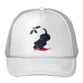 Black Labrador Puppy & Santa Hat Christmas