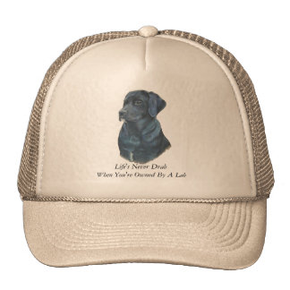 black labrador realist dog portrait art and slogan trucker hat