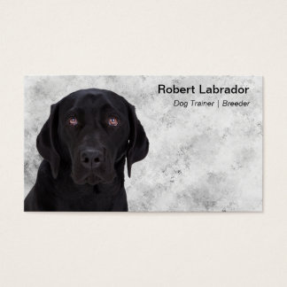 Black Labrador Retriever Business Card