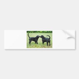 Black Labrador Retriever Car Bumper Sticker