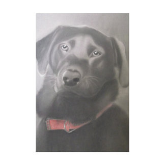 """Black Labrador Retriever"" Charcoal Drawing Canvas Print"