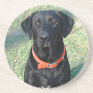 Black Labrador Retriever Coaster