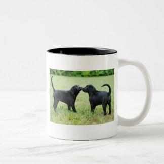 Black Labrador Retriever Coffee Mugs