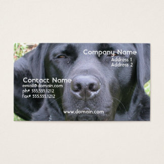 Black Labrador Retriever Dog Business Card