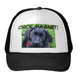 Black Labrador Retriever Hat