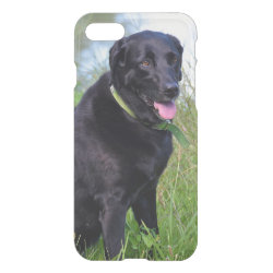 Uncommon iPhone 7 Clearly™ Deflector Case with Labrador Retriever Phone Cases design