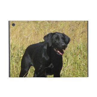 Black Labrador Retriever Covers For iPad Mini
