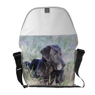 Black Labrador Retriever Messenger Bags