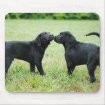 Black Labrador Retriever Mouse Mats