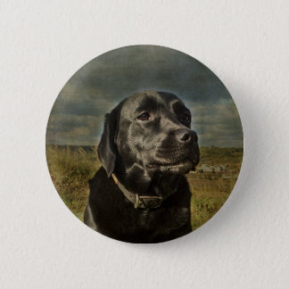 Black Labrador Retriever Pinback Button