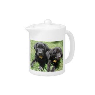 Black Labrador Retriever Puppies Teapot