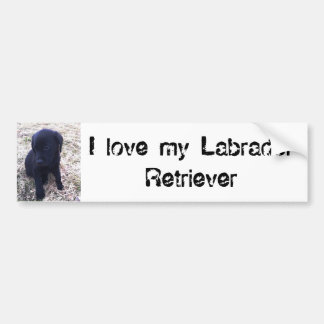 Black Labrador Retriever Puppy Bumper Sticker