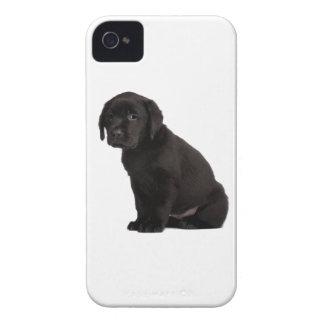 Black Labrador Retriever Puppy Case-Mate iPhone 4 Cases