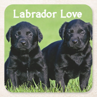 Black Labrador Retriever Puppy Dog Love Square Paper Coaster