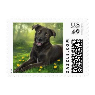 Black Labrador Retriever Puppy Dog Postage