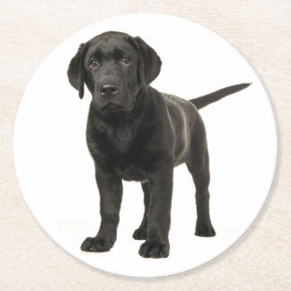 Black Labrador Retriever Puppy Dog Red Love Round Paper Coaster