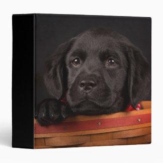 Black labrador retriever puppy in a basket binder