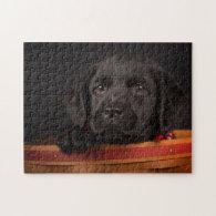 Black labrador retriever puppy in a basket puzzle