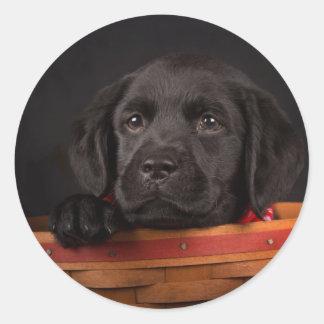 Black labrador retriever puppy in a basket round sticker
