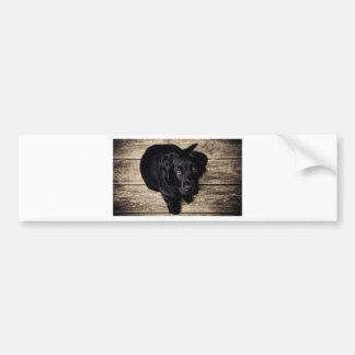 Black Labrador Retriever Puppy on Wood Bumper Stickers