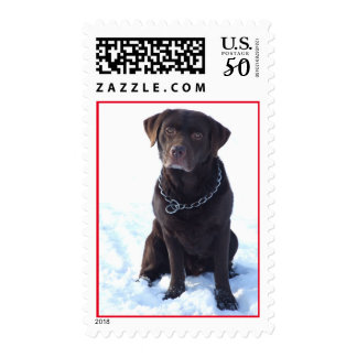 Black Labrador Retriever Puppy Postage