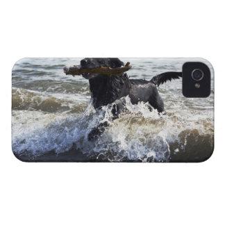 Black Labrador retriever running through surf, iPhone 4 Case