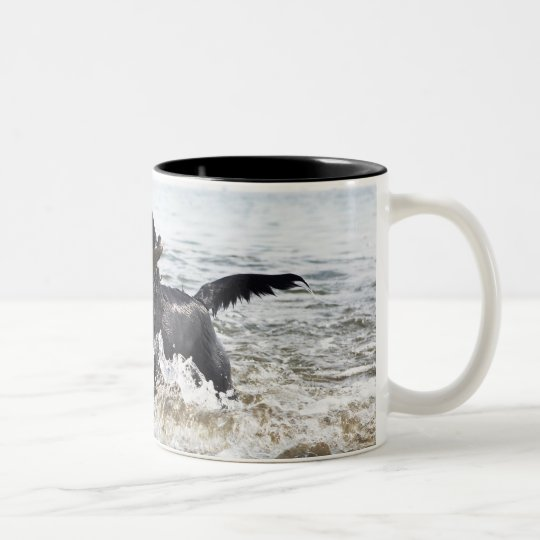 Black Labrador retriever running through surf, Two-Tone Coffee Mug