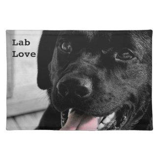 Black Labrador Retriever Selective Color Placemat