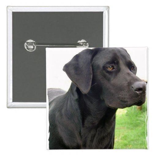 Black Labrador Retriever Square Pin