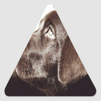 Black Labrador Retriever Triangle Sticker