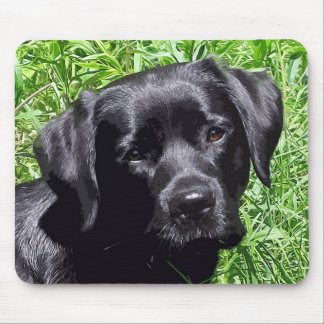 Black Labrador -Spring Day Mouse Pad
