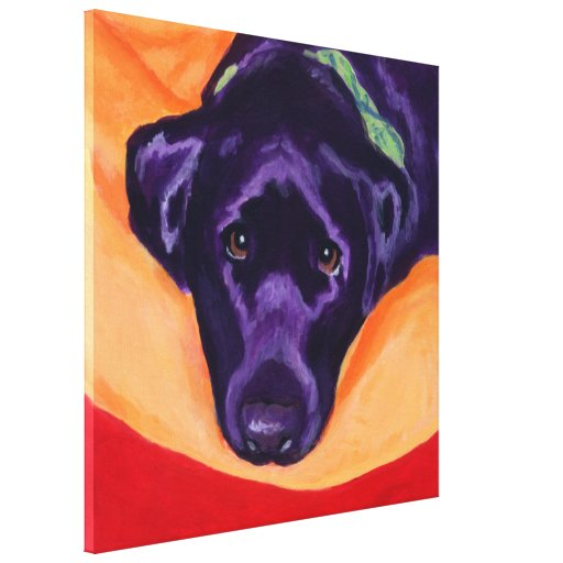Black Labrador Staring Painting Canvas