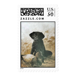 BLACK LABRADOR w/ WOOD DUCK DECOY ~ STAMPS