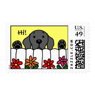 Black Labrador watching you Stamps