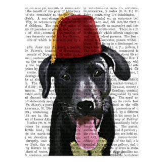 Black Labrador With Fez Postcard