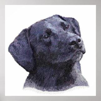 Black Labradore Retriever Print