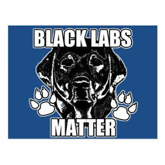 BLACK LABS MATTER 2 POSTCARD