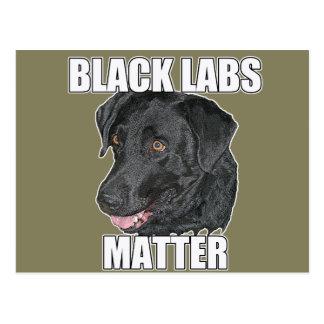 Black Labs Matter Two Postcard