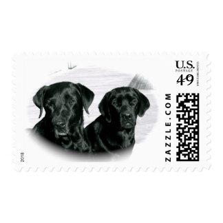 Black Labs Postage Stamp