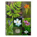 Black Lake Wildflower Photography Collage Notebook
