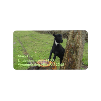 Black Lamb Personalized Address Labels