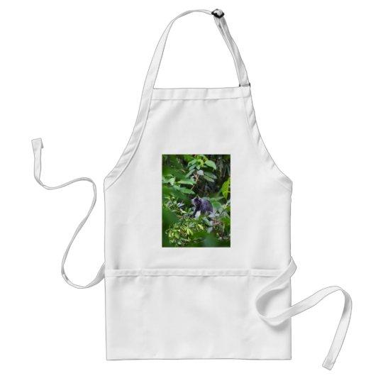 Black leaf monkey in tree Sumatra Indonesia Adult Apron