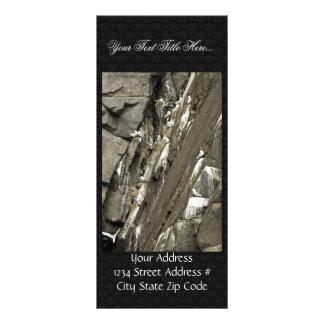 Black-legged kittiwake nests rack cards