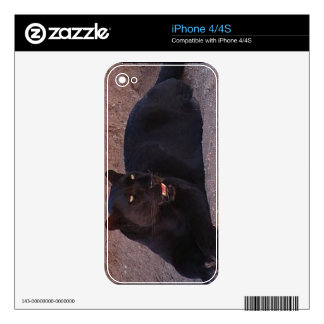 BLACK LEOPARD DECAL FOR iPhone 4