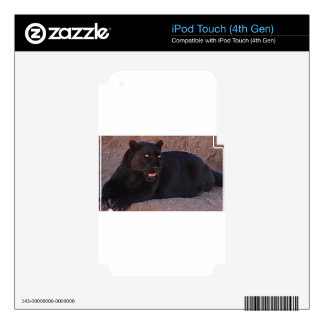 Black Leopard Decal For iPod Touch 4G