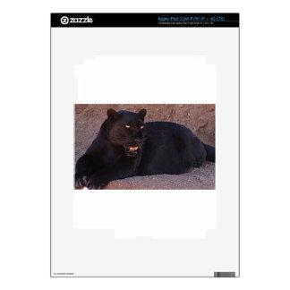 Black Leopard Decals For iPad 3