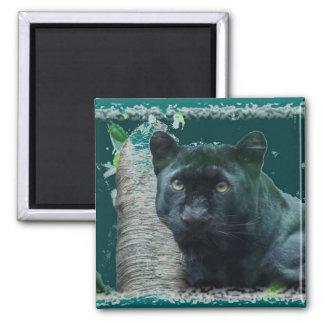 Black Leopard Magnet