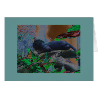Black Leopard on a branch Card