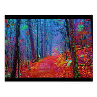 Black Light Forest Oil Painting Postcards