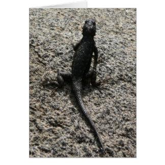 Black Lizard Card